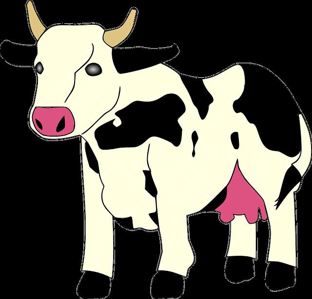 contoh gambar kartun sapi