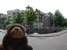 Teddy Bear in Amsterdam