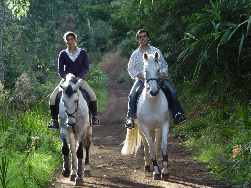 Horse riding in Madeira