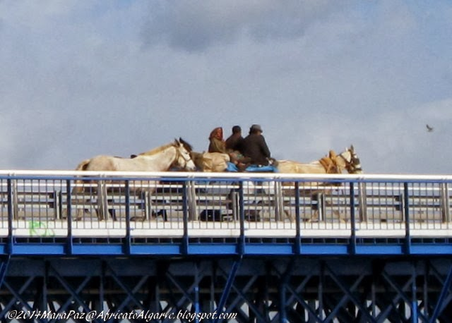 Gypsies on the old Portimão bridge