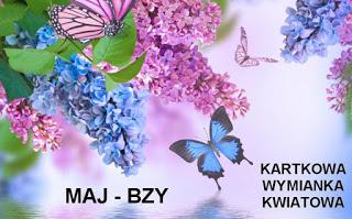 BZY - LILAS