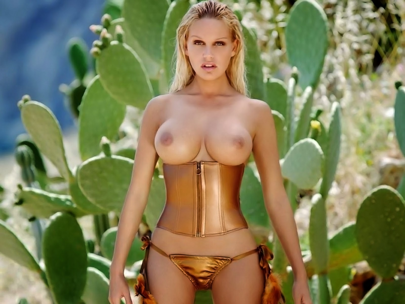 Lisa Rinna Sex Scene Porno Videos Pornhubcom
