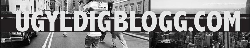 Ugyldigblogg.com