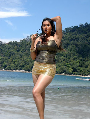 Actress Namitha High Quality Bikini Hot Photos