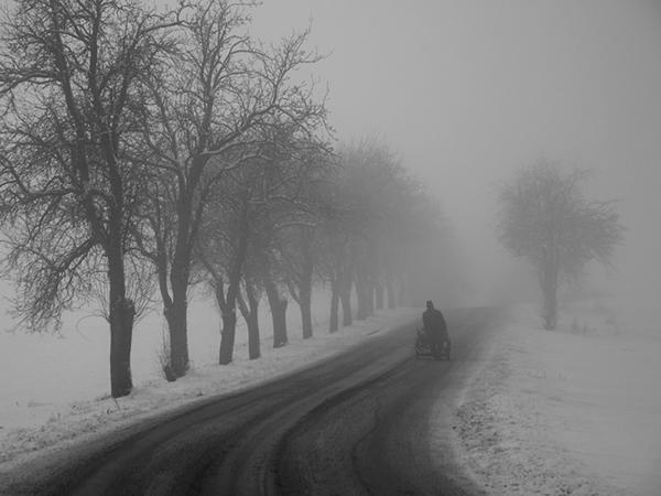 nuncalosabre.Solitariness - Miro Simko