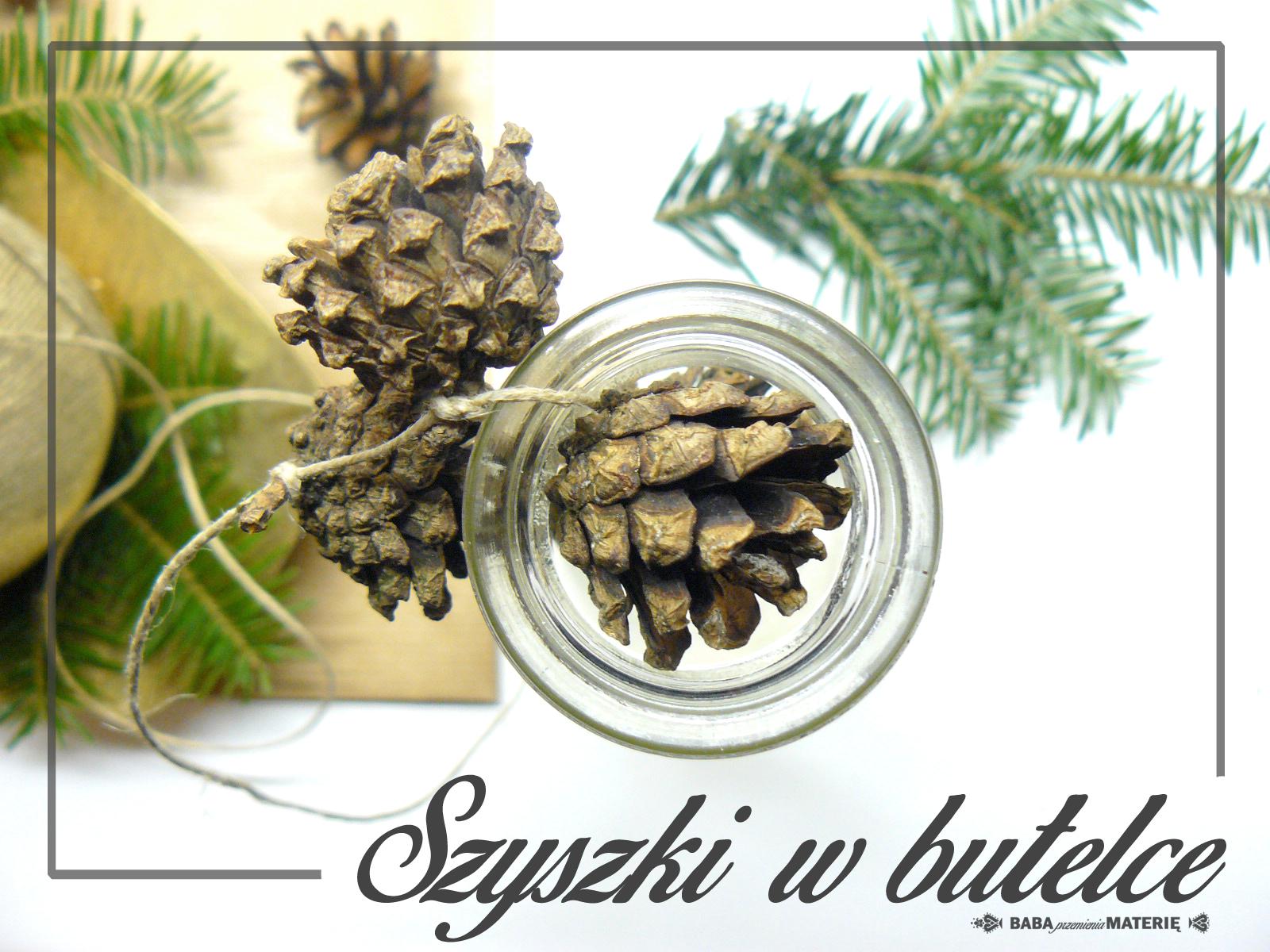 http://babaprzemieniamaterie.blogspot.com/2015/11/diy-dekoracje-szyszki-w-butelce.html#more