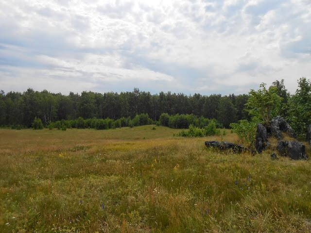 Каменные останцы на лугу у озера Большие Касли