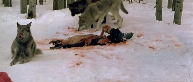 My Movie Review imdb copyright: Frozen (2010)
