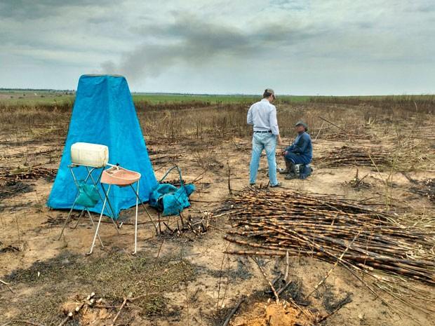 330 cortadores de cana na Bahia em situação de escravidão (Foto: Osvaldo Myles Neto/PRF/Divulgação)