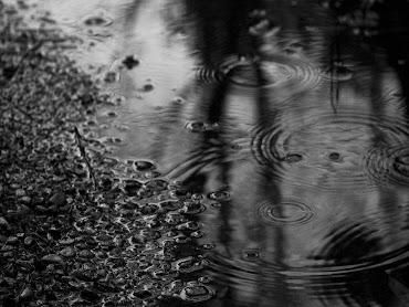 #3 Rain Wallpaper