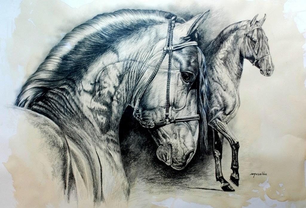 Pintura Moderna y Fotografa Artstica  Cabezas de caballos al leo