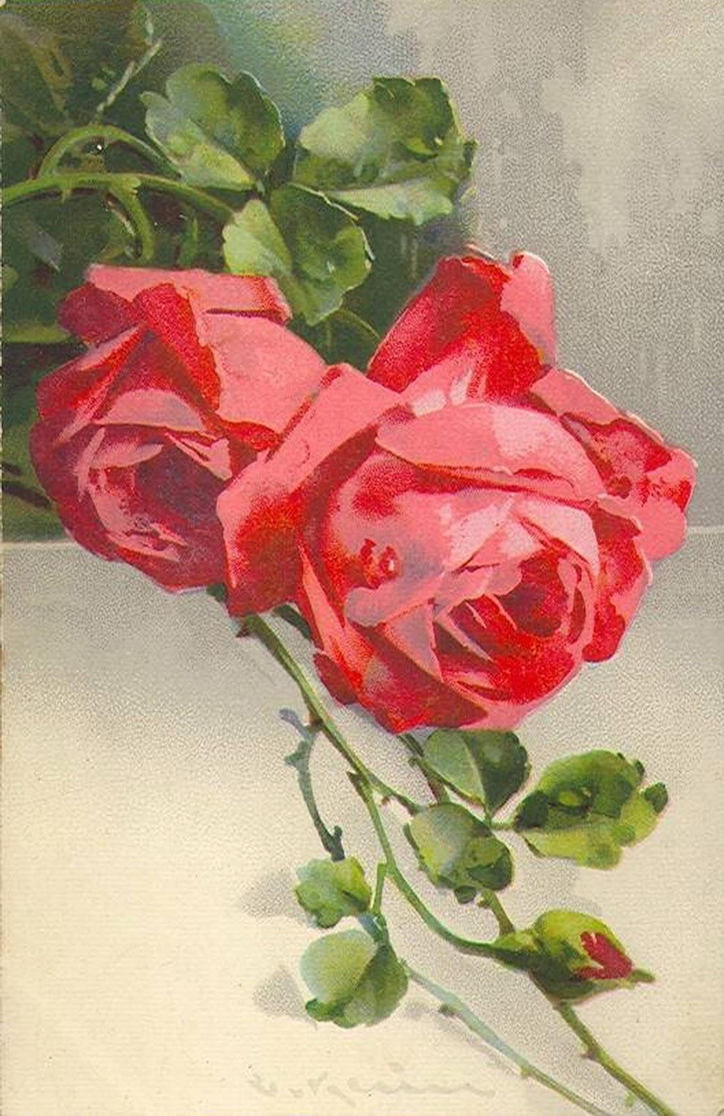 Картинка с розой для тебя - Цветы анимация 81
