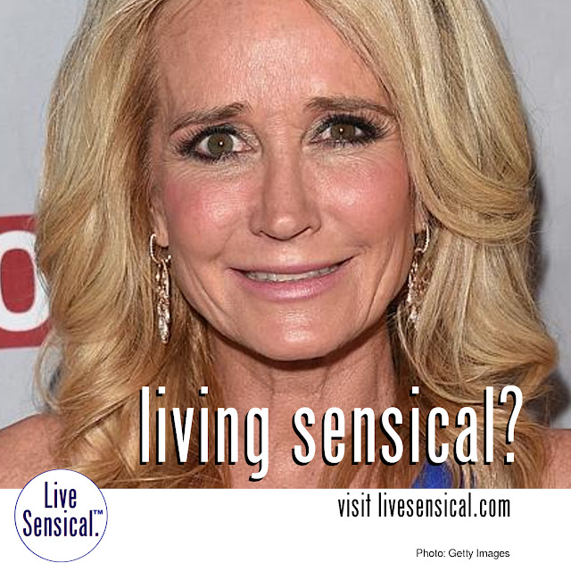 Kim Richards (example of how to livesensical.com?) has been admitted to hospital by concerned family members after she was arrested for shoplifting last week. The 50-year-old star of the American series, The Real Housewives of Beverly Hills, was accused of stealing more than 100 items worth $612 from a Target store last Sunday, according to the Los Angeles City Attorney. Richards recently spent a month in rehab, but checked out in July before being caught shoplifting.