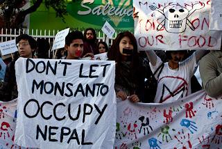 Assim como no Brasil, Monsanto quer monopolizar a agricultura no Nepal com transgênicos