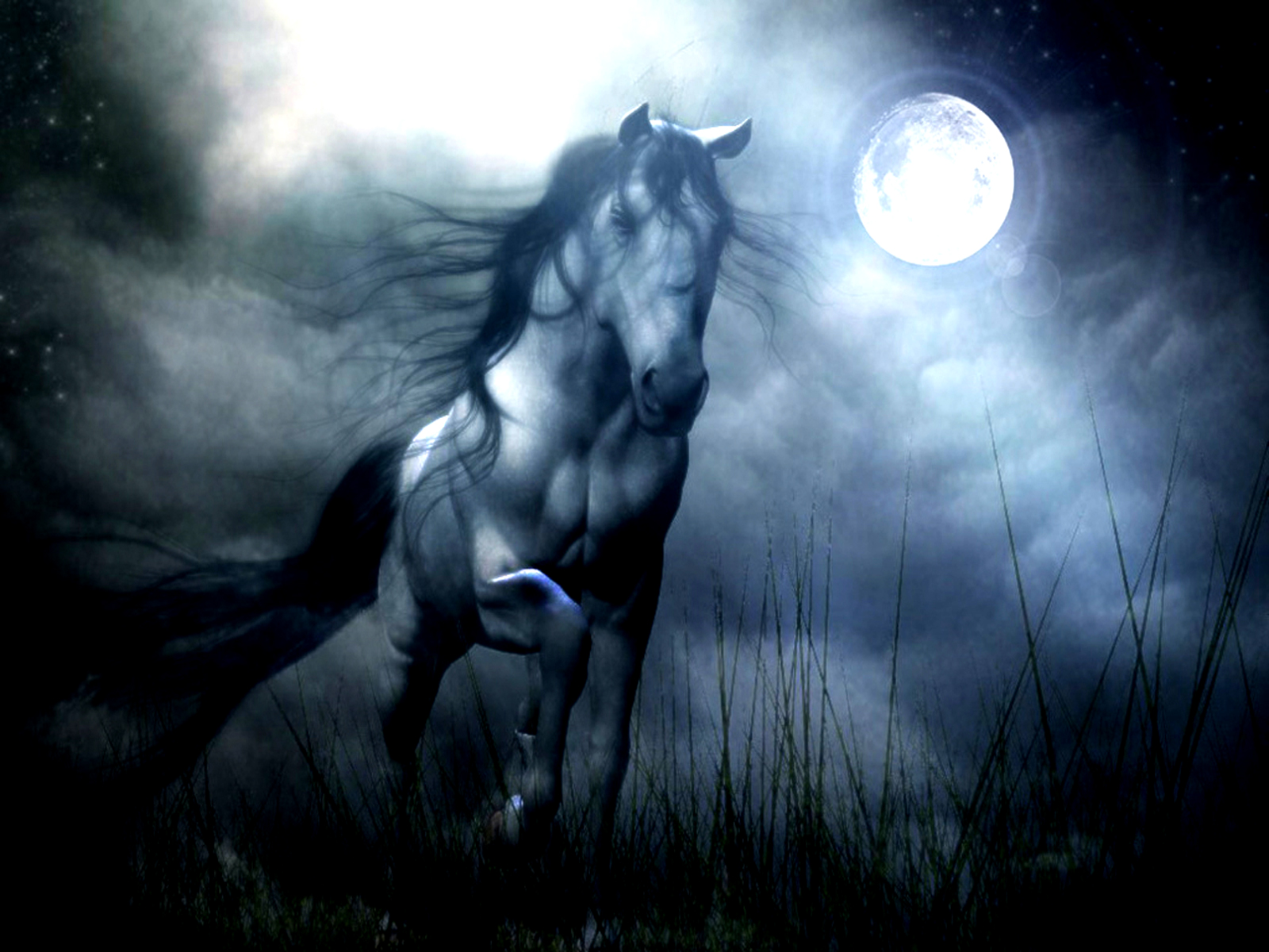 Most Inspiring   Wallpaper Horse Halloween - fantasy-horse-hd-wallpaper1  Snapshot_266869.jpg