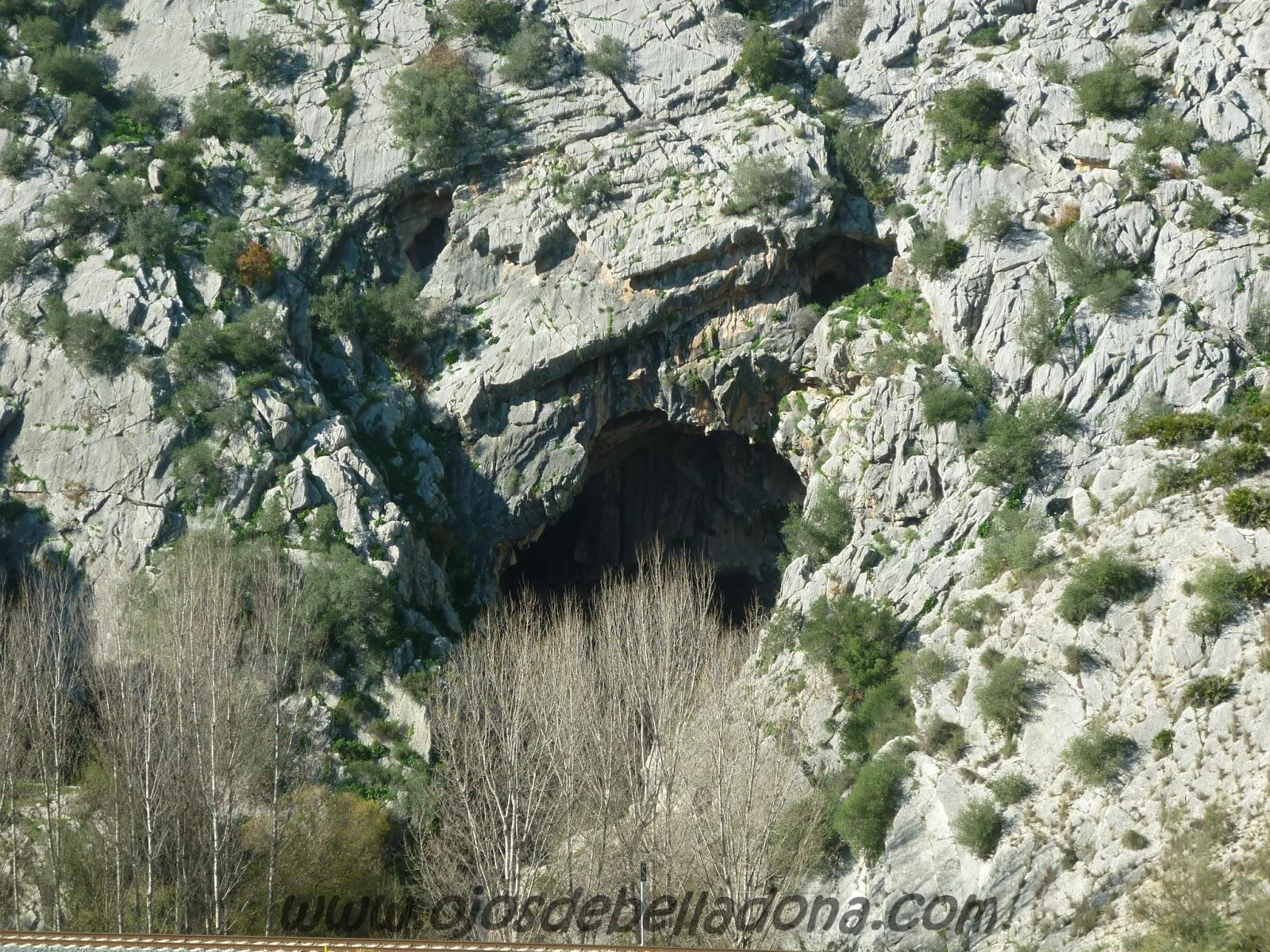 Cueva del Gato. Benaoján