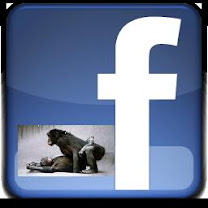 FACEBOOK DEL BLOG