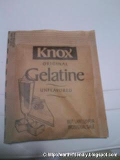1 Pouch Knox Gelatine