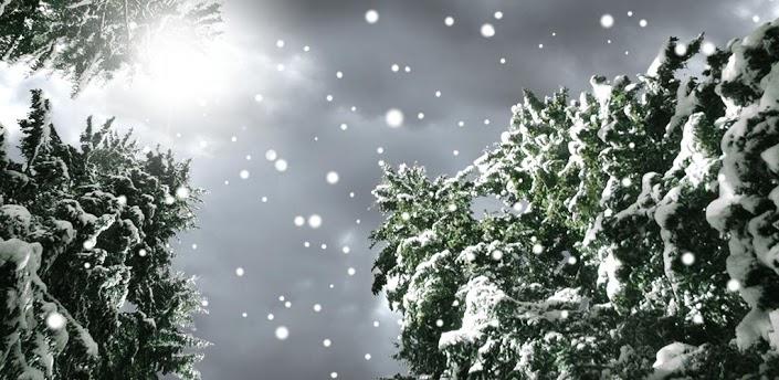 живые картинки снега