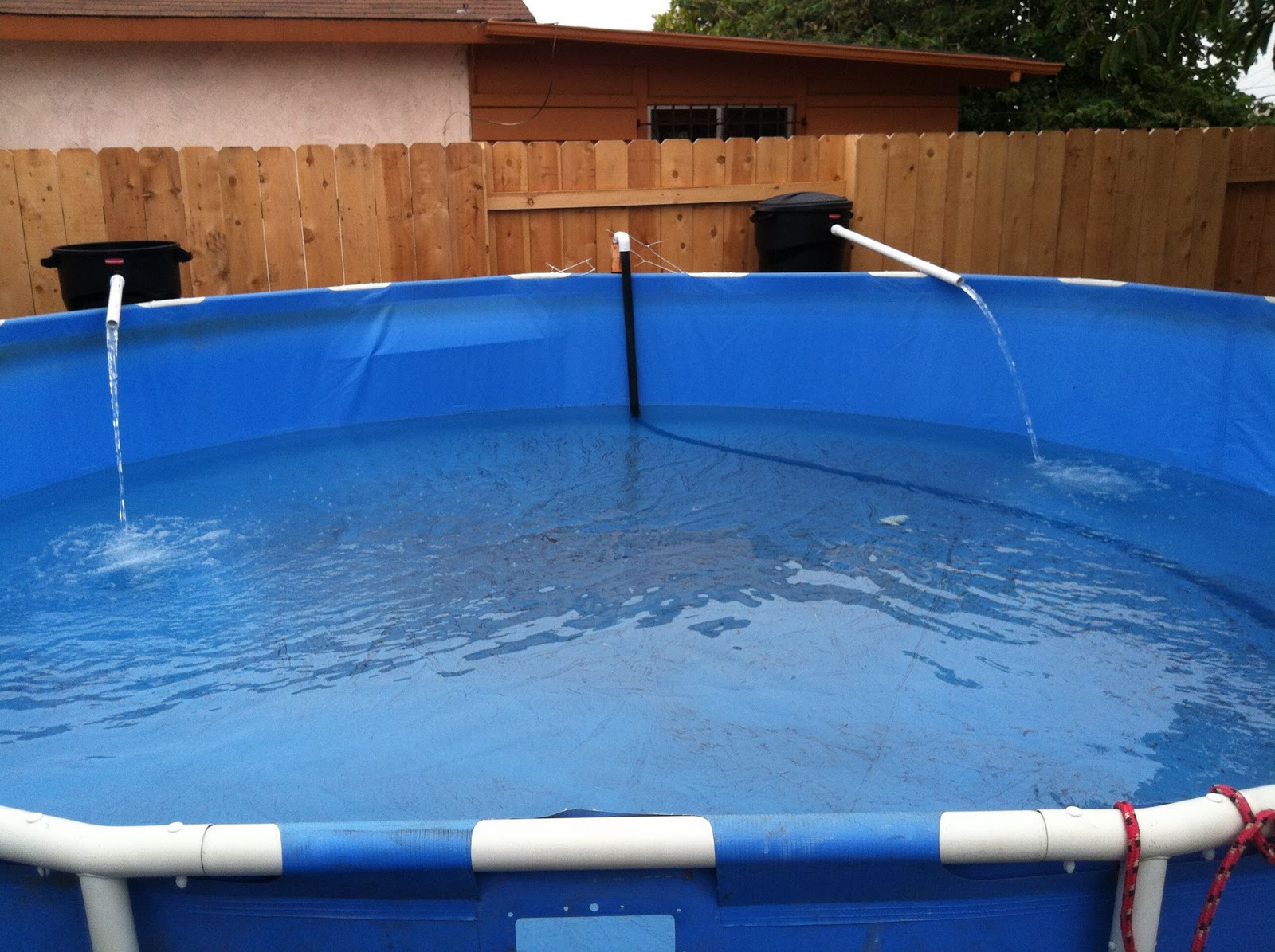 Confessions of a koi kichi for Pool to koi pond conversion