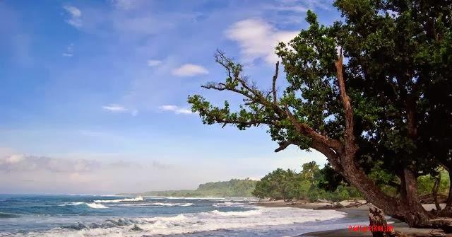 Pantai-Way-Gegas-Pugung-Lemong.jpg