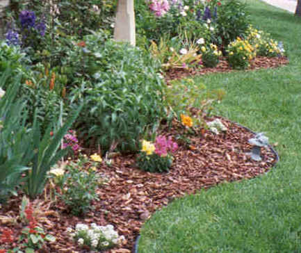 Remodelaholic getting more curb appeal for Grass plants for flower beds