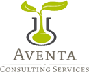 Aventa Consulting Services