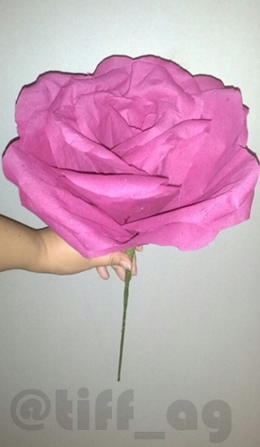 Tokki diys my first attempt at making a giant crepe paper flower not bad for my very first attempt it could have been worse trust me the preparation was a lot to do but since i have the templates drawn and cut out to mightylinksfo