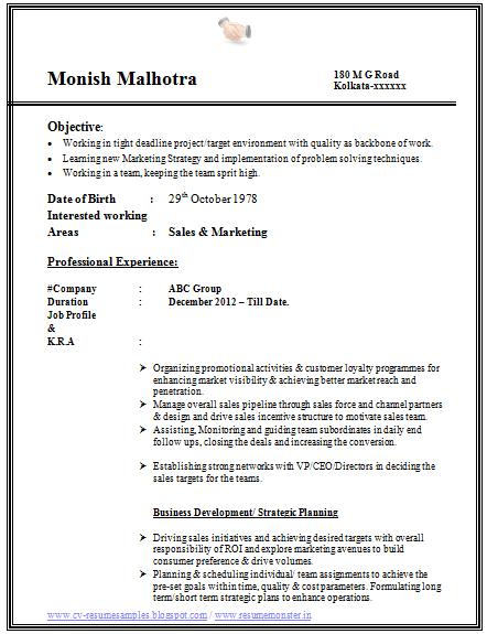 resume career profile