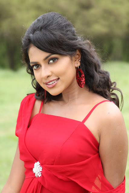 Amala Paul with Saree and Dress Photos