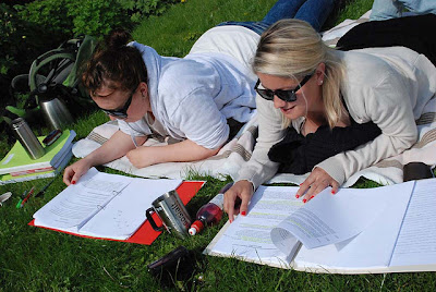 Studier i gröngräset. Foto: Universitetet i Bergen CC BY-SA