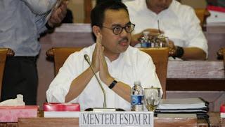Selama persidangan Sudirman Said di cecar berbagai pertanyaan yang tidak relevan termasuk tentang pembuangan limbah pt.freeport