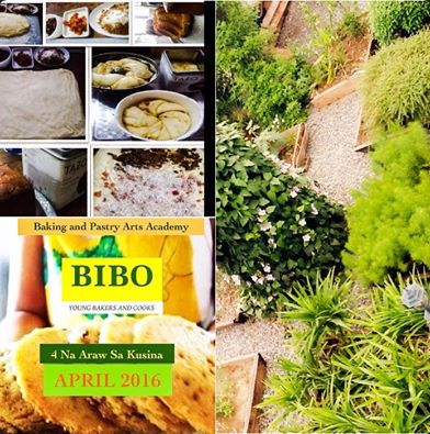 BIBO -  Young Bakers and Cooks
