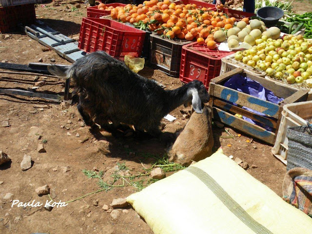 Na Terra do Sol Poente - Viagem a solo por Marrocos - Página 2 IMGP0453