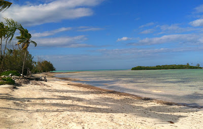 The beach and flat at Swain's Cay Lodge, Andros Bahamas