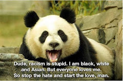 Racism is stupid. I am black, white and Asian. But everyone loves me.