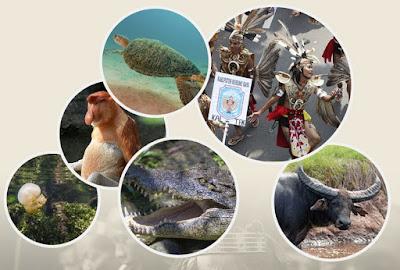 Membelah 7 Destinasi Ekuator Kalimantan