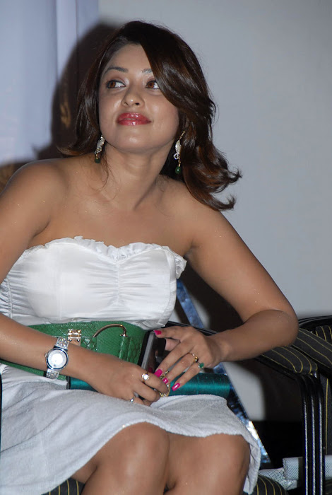 payal gosh at facebook movie logo launch, payal gosh new unseen pics