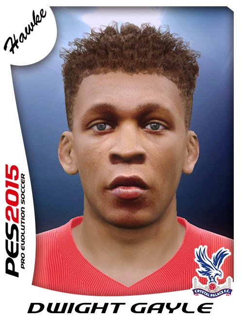 PES 2015 Dwight Gayle Face by Hawke