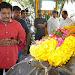 Celebs Pay Homage to Rama Naidu-mini-thumb-148