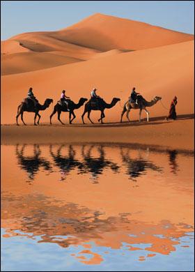 Resultado de imagen de Espejismo en el Desierto