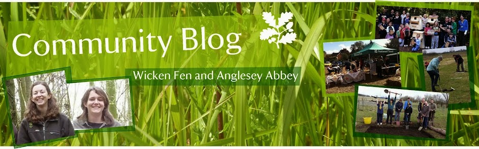 Community at Wicken Fen and Anglesey Abbey