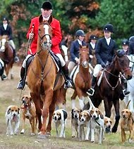 Thanksgiving Fox Hunt Ride