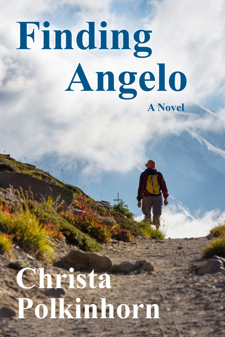 Finding Angelo (The Wine Lover's Daughter, Book 2).