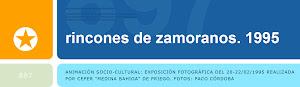 Blog-webs sobre Zamoranos: