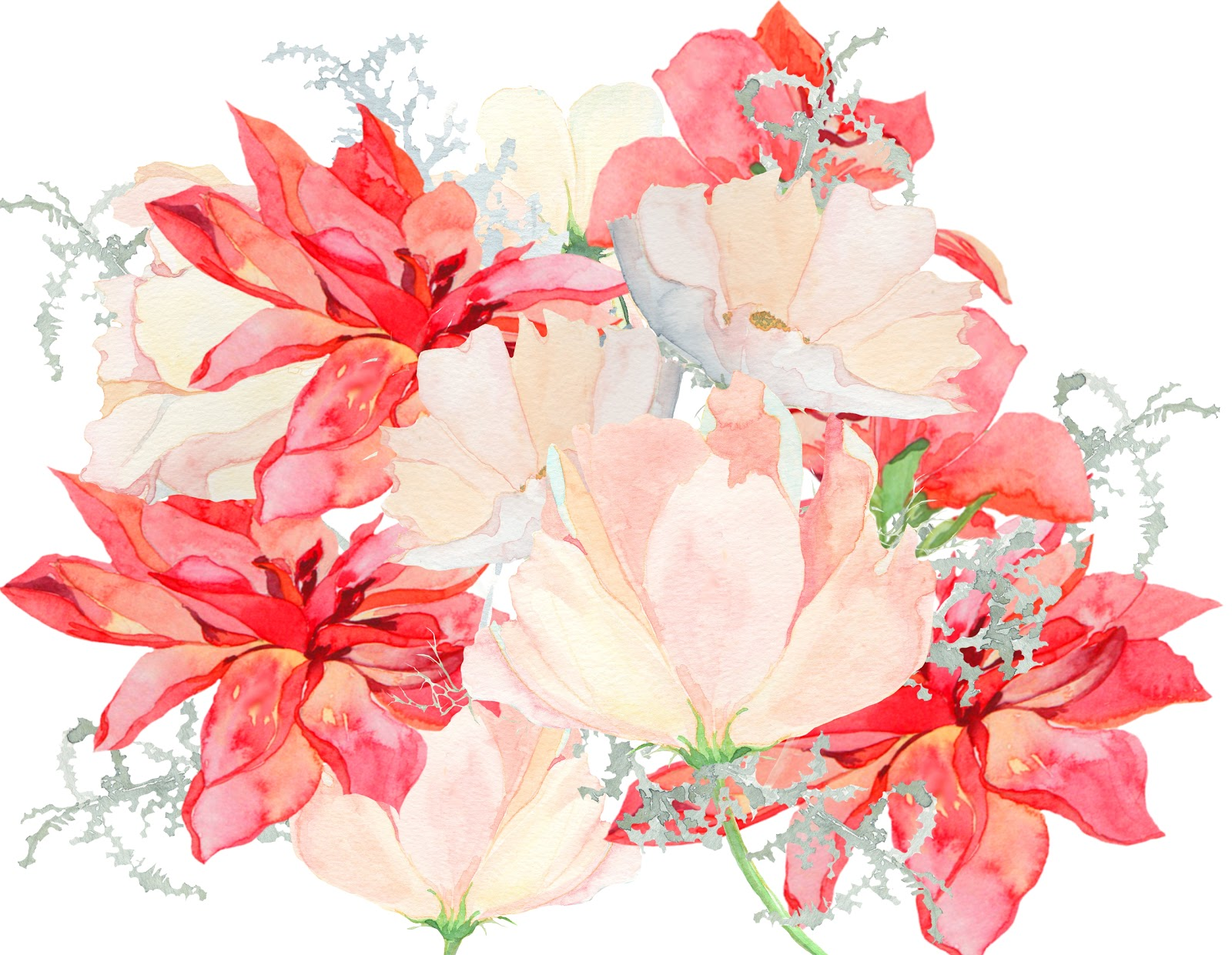 DEEP COVE FLOWERS September 2012