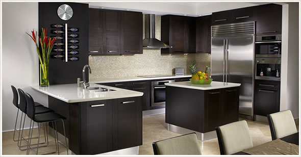 Black Modern And Fresh Interior Design Kitchen Ideas