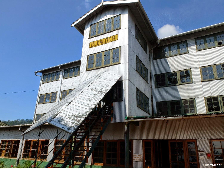 fabriuqe usine de thé noir BOPF Sri-Lanka