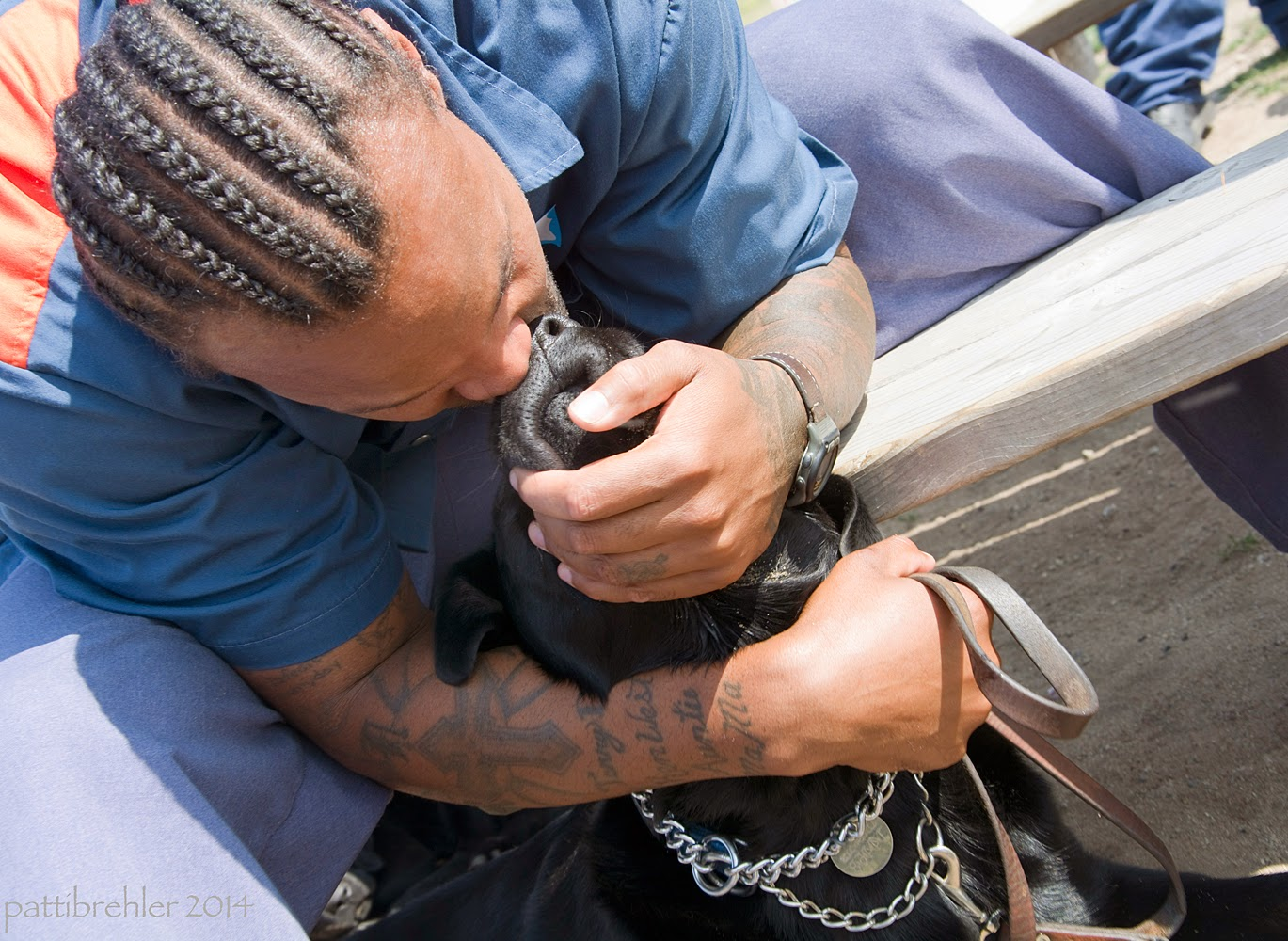 A close head and shoulders shot of the african american man from above. The man has cornrows in his hair. His arms are wrapped around the head of a young black lab that is in front of him. The man is pulling the dog's snout to his face and giving the dog a big kiss on his nose.