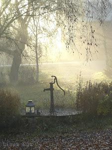 Vacker morgon...